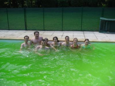 La piscine gn prod h4 c 39 est fini for Algues dans la piscine
